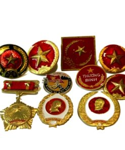 Selection of Vietnamese Vietnam Army hat badges medals and pins - 10 types