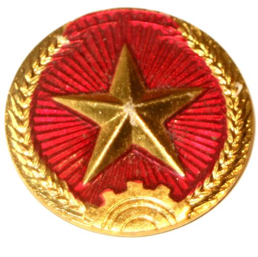 Vietnam Army badge